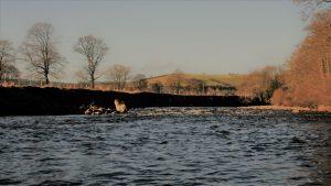 Otter Pool & Old Milton Deep