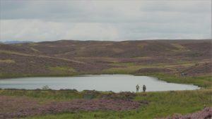 Hill loch in summer