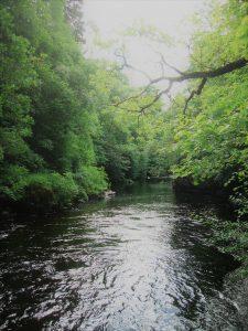Deep pools below the Netherton Bridge